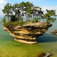 Ungewöhnliche Insel